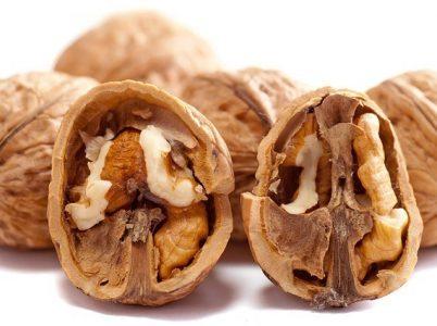 Le noci, un gustoso frutto donataci dagli dei