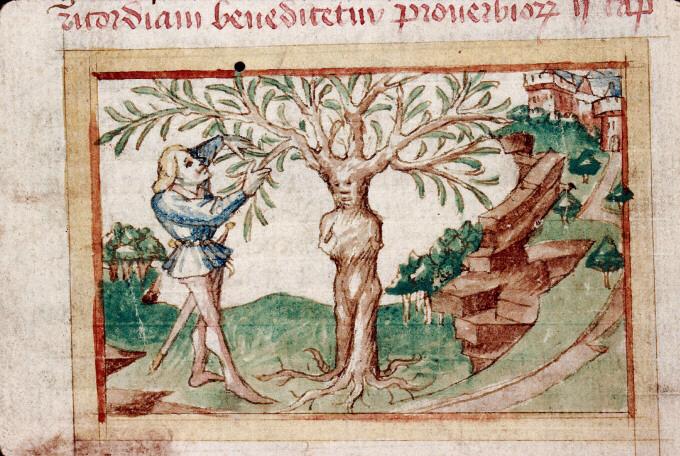 Apollo e Dafne, la storia di un amore infelice